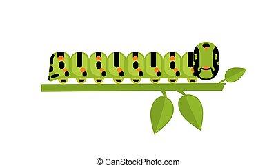 Green caterpillar on a green plant