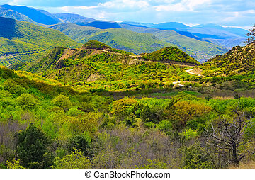 Green caucasus mountain landscape in Georgia