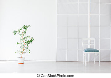 green chair with a plant in a pot in an empty white room