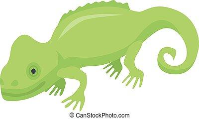 Green chameleon lizard icon, isometric style