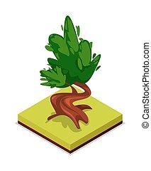 Green chestnut tree isometric 3D icon