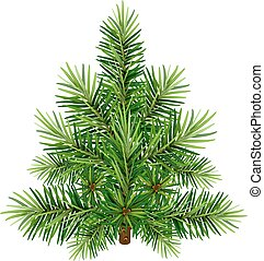 Green Christmas pine tree. Isolated on white vector