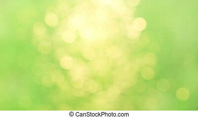 green circle blurred background