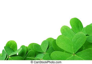 St. Patrick's clover border isolated on white background