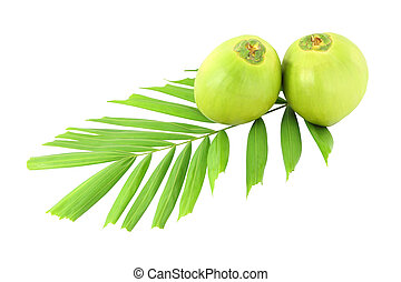 Green coconuts and leaf on white background.