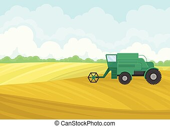Green combine in the field. Vector illustration on white background.