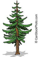 Green Coniferous Tree - Cartoon Illustration, Vector