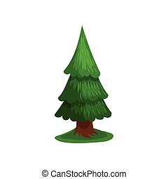 Green coniferous tree vector Illustration