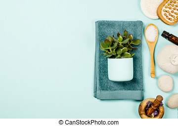 Green cosmetics flat lay with succulent plant