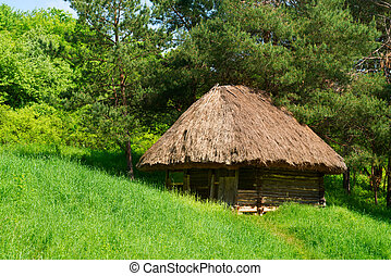 Green country authentic wooden house
