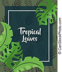 green cover monstera foliage tropical leaves