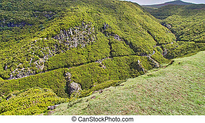 Green covered mountain landscape in the mountains on Madeira