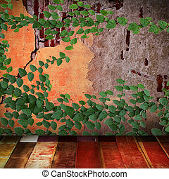 Green creeper leaves plant on old wall with wooden floor
