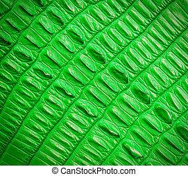 green crocodile skin texture