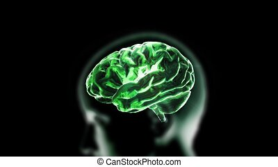 green crystal brain and head