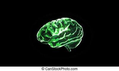 green crystal brain still render