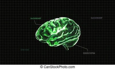 green crystal brain timecode