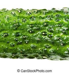 Green Cucumber texture close up macro