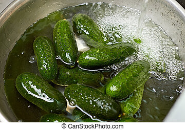 Green cucumbers in a basin of water, close up.