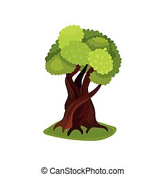 Green deciduous tree vector Illustration