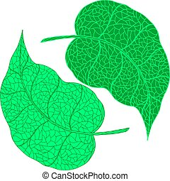Green doodle hand drawn leaves.