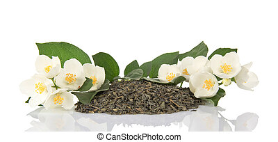 Green dry tea and the branches of a blossoming jasmine
