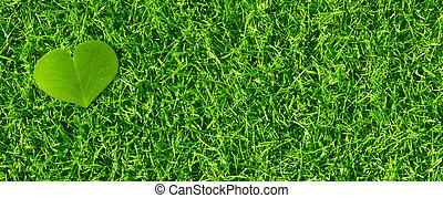 Heart shaped clover petal over green grass, horizontal banner
