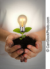 Green energy concept : Bulb of plant on women hand