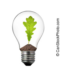 green energy concept - light bulb with oak leaf inside