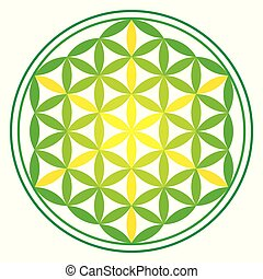 Green Energy Flower of Life on white background