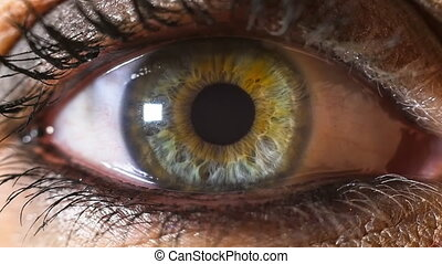 green eye contracting slow motion - iris pupil contracting...