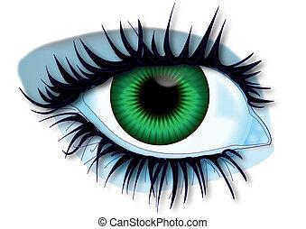 Green eye - Illustration green eye of body parts