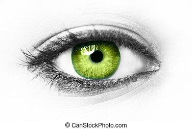 Green eye isolated