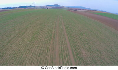 """Green farmland, aerial view of long cultivated fields. Agriculture, farming"""