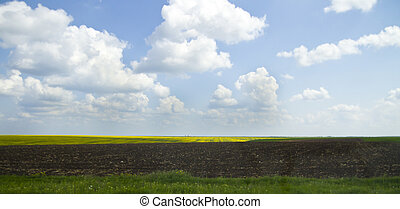 Green farmland with cloudy blue sky