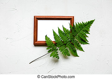 Green fern in a frame on white. Health concept