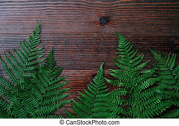 Green fern leaves on brown wooden background