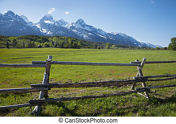 Green field and barn of a horse ranch below the Grand Teton mountains in Wyoming