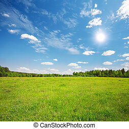green field and blue cloudy sky