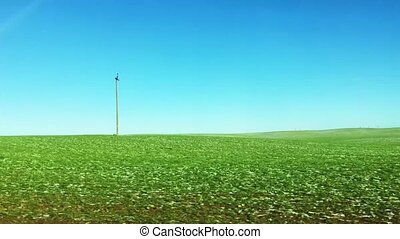 Green field and blue sky, driving by a nature landscape on a sunny day