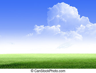 Green field and sky blue with white cloud