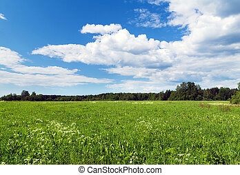 green field background nature