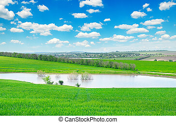 green field, lake and cloudy sky