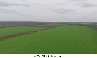 Green field landscape aerial drone view takeoff up camera movement