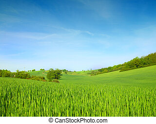 green field on blue sky