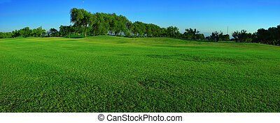 Green field panorama