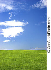 Green field with a great blue sky