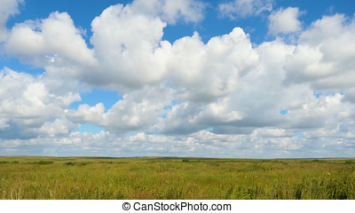 Green field summer landscape, timelapse. Clouds and blue sky...