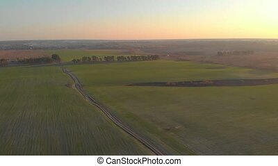 Green field sunset mist aerial drone view