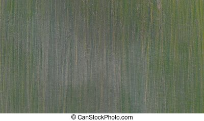 Green field top view aerial drone